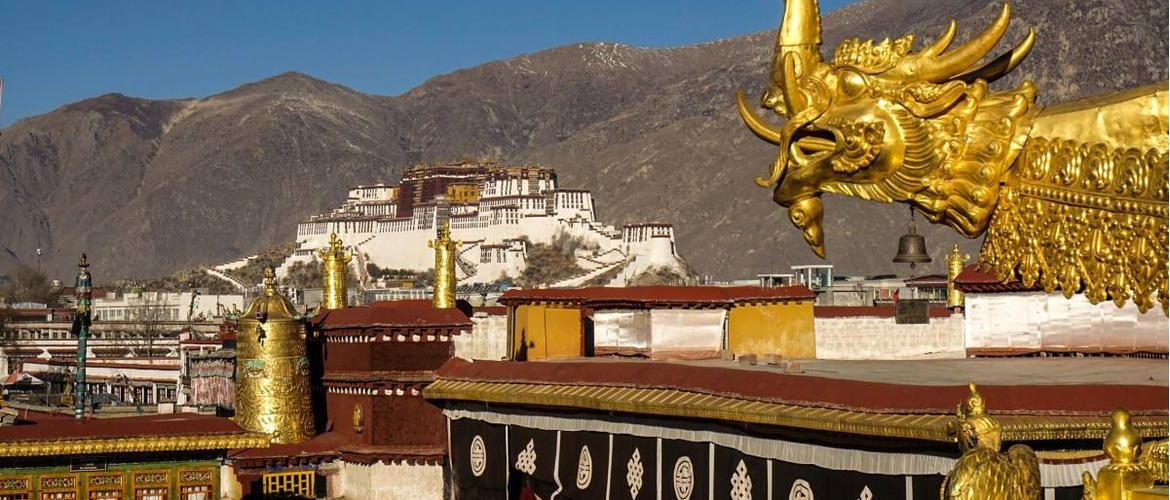 From a definite point of view, you can see Jokhang Temple and Potala Palace together.
