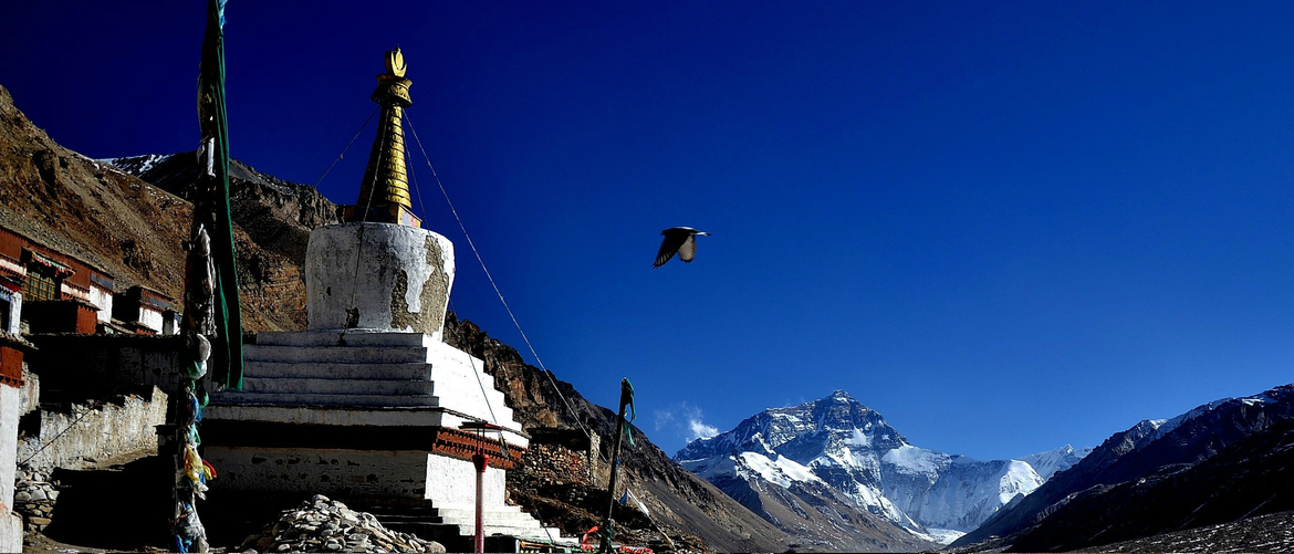 You will finally arrive at Everest Base Camp and visit Rongbuk Monastery.