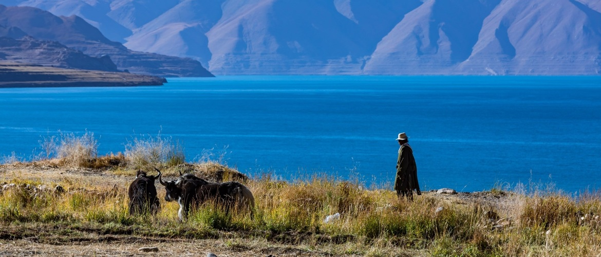 Scenery can be seen everywhere in Tibet, even at a unknown place.